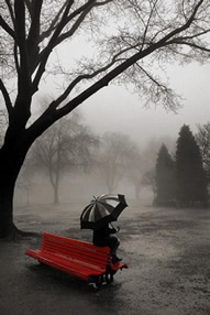 Sitting on a Red Park Bench on a Rainy Day