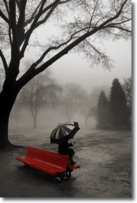 Rainy Day on a Red Bench