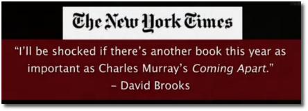 Quoting David Brooks